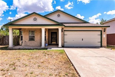 701 Brandi Cir, Kyle, TX 78640 - MLS##: 1185438