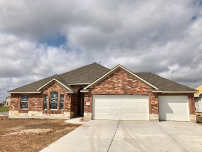 20300 Arctic Loon Pass, Pflugerville, TX 78660 - #: 1249492