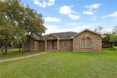111 Woodland Oaks Trl, Buda, TX 78610 - MLS##: 1311026