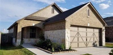 13613 Abraham Lincoln St, Manor, TX 78653 - MLS##: 1352586
