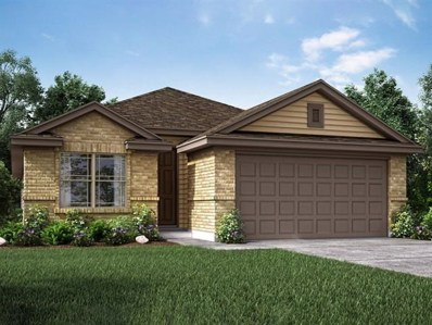 13603 Primrose Petal Dr, Manor, TX 78653 - MLS##: 1367189