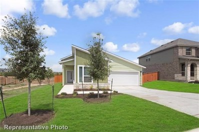 11305 Saddlebred Trl, Austin, TX 78653 - MLS##: 1379114