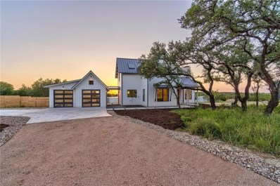 151 Terra Scena Trl, Dripping Springs, TX 78620 - MLS##: 1467501