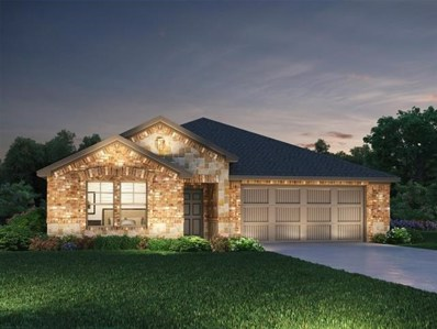 425 Windy Reed Rd, Hutto, TX 78634 - MLS##: 1520174