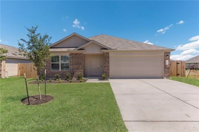 208 Pearland St, Hutto, TX 78634 - MLS##: 1659409