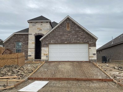 1148 Leadtree Loop, Buda, TX 78610 - MLS##: 1829005