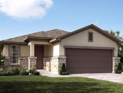 209 Mount Locke Rd, Dripping Springs, TX 78620 - MLS##: 1862948