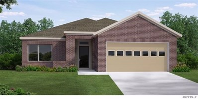 599 Bridgestone Way, Buda, TX 78610 - MLS##: 1875621