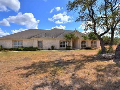 246 Mustang Mesa, Liberty Hill, TX 78642 - MLS##: 2136356