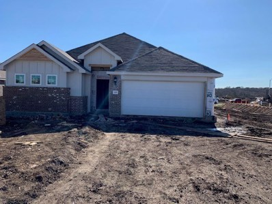 218 Clearlake Dr, Hutto, TX 78634 - MLS##: 2198407