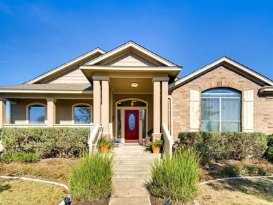 908 Black Canyon St, Pflugerville, TX 78660 - MLS##: 2214902