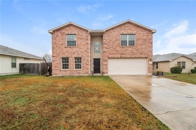 353 Indian Paintbrush Dr, Kyle, TX 78640 - MLS##: 2228797