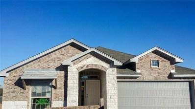 20121 Navarre Terrace, Pflugerville, TX 78660 - #: 2252306
