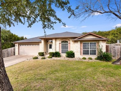 2602 Warren Cv, Lago Vista, TX 78645 - MLS##: 2333514