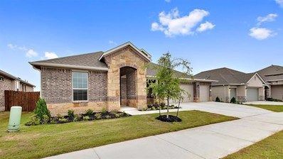 16616 Aventura Ave, Pflugerville, TX 78660 - MLS##: 2434248