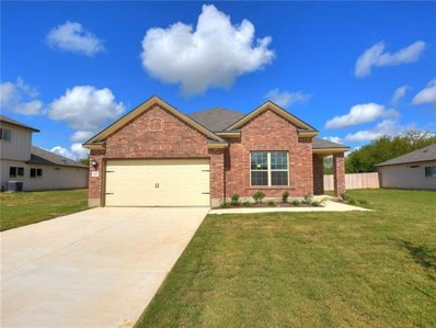 628 Evening Star Drive, Kyle, TX 78640 - #: 2743892