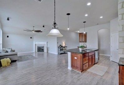 711 Wood Mesa Ct, Round Rock, TX 78665 - #: 2861515