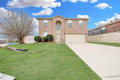 3052 Rain Dance Loop, Harker Heights, TX 76548 - MLS#: 2870548