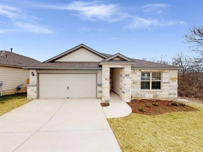 245 Falling Star Ln, Georgetown, TX 78628 - MLS##: 2943318