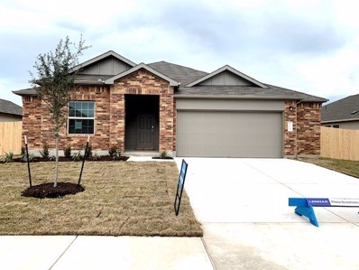 113 Balsam Way, Hutto, TX 78634 - MLS##: 2995118