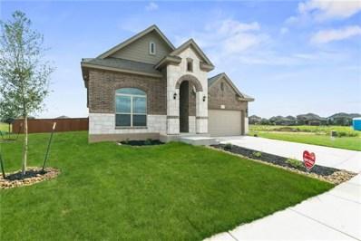 132 Emery Oak Ct, San Marcos, TX 78666 - #: 3087735