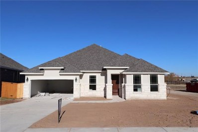 3545 De Soto Loop, Round Rock, TX 78665 - MLS##: 3118930