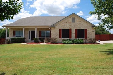 630 Speed Horse, Liberty Hill, TX 78642 - #: 3151549