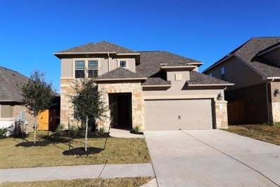 171 Danbark Dr, Buda, TX 78610 - MLS##: 3188581