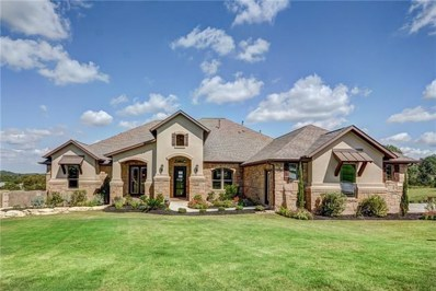 1043 Arbor Canyon Pass, Driftwood, TX 78619 - MLS##: 3252664
