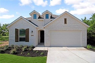 22611 Fountaingrass Ln, Lago Vista, TX 78645 - MLS##: 3305035