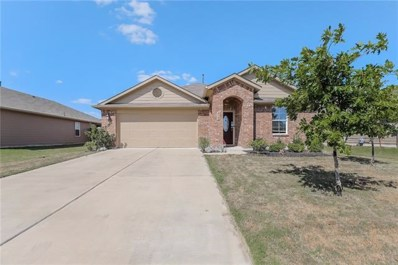 409 Luna Vista Dr, Hutto, TX 78634 - MLS##: 3308090