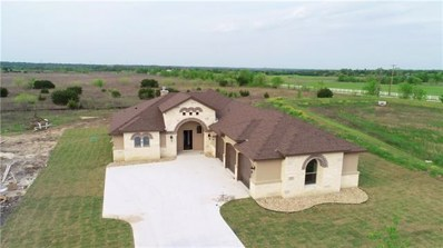 1102 Northcross Dr, Salado, TX 76571 - MLS##: 3342868