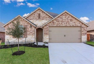 155 Tailwind Dr, Kyle, TX 78640 - MLS##: 3446753