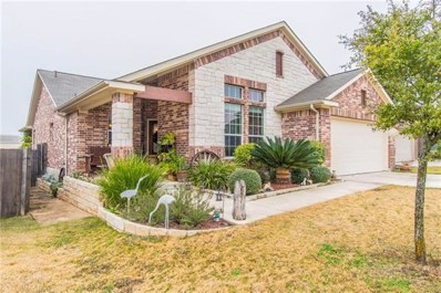 319 Pond View Pass, Buda, TX 78610 - #: 3453681