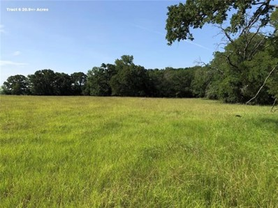 000 County Road 458A, Thorndale, TX 76577 - MLS#: 3509309