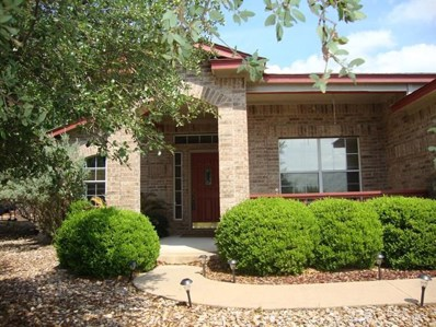 20729 Henry Avenue, Lago Vista, TX 78645 - #: 3722084