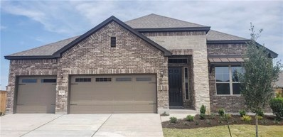 16817 John Michael Dr, Manor, TX 78653 - MLS##: 3741611