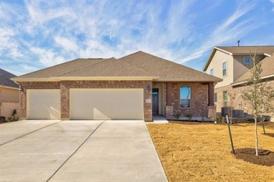 20312 Crested Caracara Ln, Pflugerville, TX 78660 - MLS##: 3816775