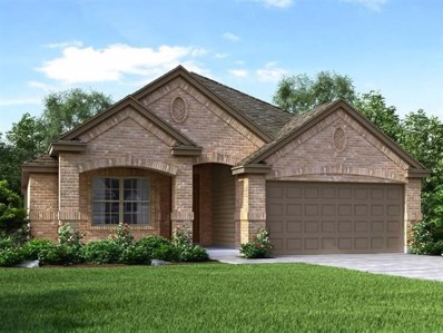 213 Colthorpe Ln, Hutto, TX 78634 - MLS##: 3824885
