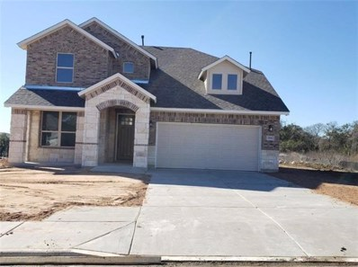 104 Meadow Wood Cv, Georgetown, TX 78626 - MLS##: 4111600