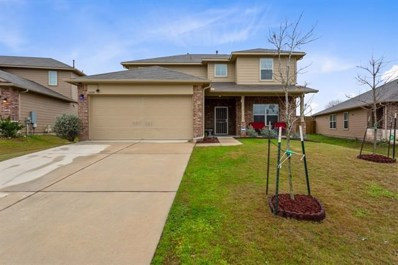 19129 E Great Falls Dr, Manor, TX 78653 - MLS##: 4411588