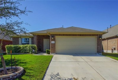 272 Strawberry Blonde Drive, Buda, TX 78610 - #: 4516128