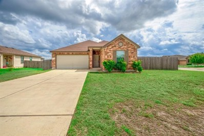 220 New Country Road, Kyle, TX 78640 - #: 4517866