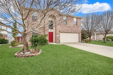 3040 Rain Dance Loop, Harker Heights, TX 76548 - MLS#: 4688185