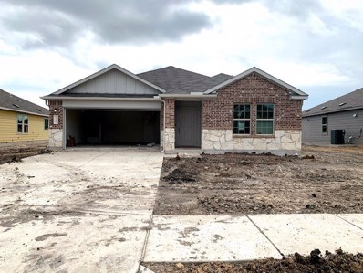 116 Pearland St, Hutto, TX 78634 - MLS##: 4702304
