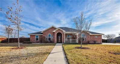2020 Purple Martin Dr, Killeen, TX 76542 - MLS##: 4864314