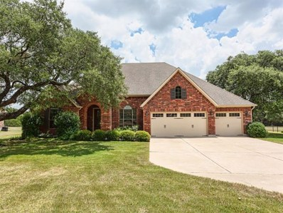 217 Shelf Rock Road, Driftwood, TX 78619 - MLS##: 4898670