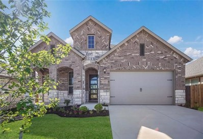 355 Tailwind Dr, Kyle, TX 78640 - #: 5130638