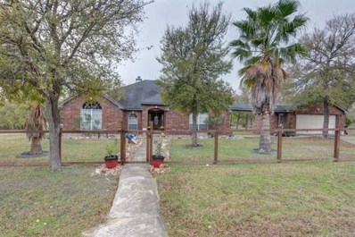 205 Lakeview Dr, Del Valle, TX 78617 - MLS##: 5275830