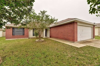 307 Willowbrook Drive, Hutto, TX 78634 - #: 5290576